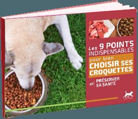 Guide choisir Croquettes